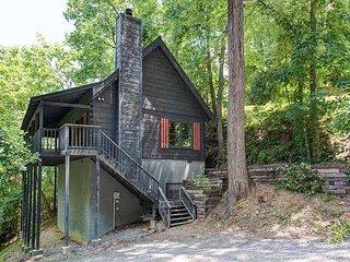 1 Bedroom, 1 Bath,Log Cabin, Sauna, Hot Tub Pool Table