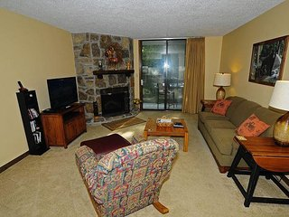 1 King Bedroom/1 Bath Condo, Electric Fireplace, Covered Patio, On Site Pool