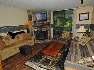 1 Bedroom/1 Bath Condo Overlooking Mtn. Stream, Whirlpool, Patio, Fireplace