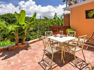 NEW! 'Olivesville' St. Thomas Studio Near Beaches!