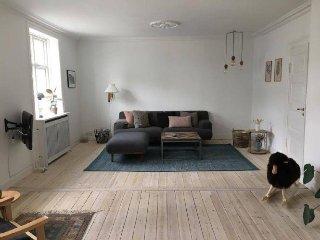 Large and bright Copenhagen apartment at Fuglebakken