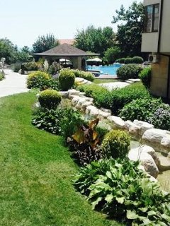 landscaped grounds and pool bar