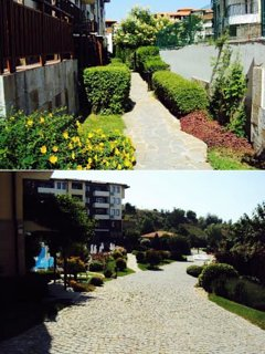 landscaped pathway