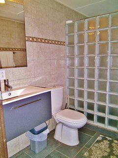 Renovated guest bath with walk-in shower.  Pristine