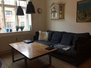 Cozy Copenhagen apartment at Islands Brygge