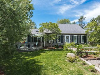 LITTD - Beachy Cape -Edgartown,  Private Yard, Front and Back Decks, Minutes to