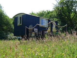 Cwt Gwyrdd Shepherd's Hut and Yurt Glamping