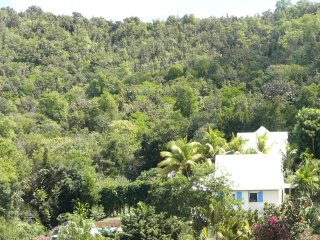 **MARTINIQUE-POOL HOME-STEPS FROM SURFING BEACH-HIKING PARK-FLY NORWEGAIN AIR!!!