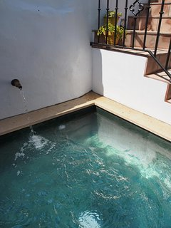 Green marble plunge pool