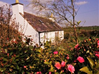 Gulliesidecottage A Charming Galloway Cottage sleeping up to 7 poeple