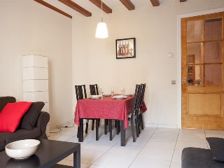 Charming modern apartment conveniently located in city center's heart. 1 month