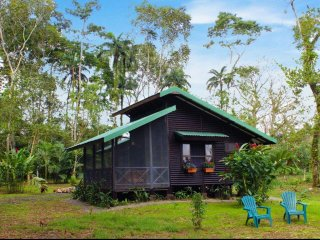 Cabana Los Tucanes - Rain Forest Paradise