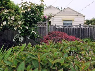Sweet Home Stay Dog-Friendly 2 BD/2 BA Fenced Yard Bungalow Near Plaza & HSU