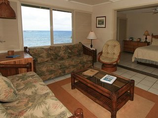 #4 - Nanu'alele (Oceanfront 1-Bedroom/1-Bathroom Hana Condo)