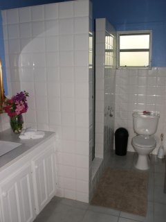 Shower area and toilet Nutmeg Cottage