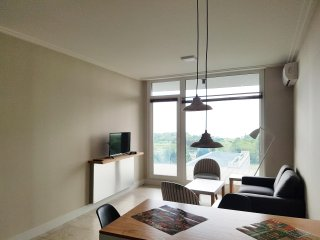 Luxury 1BDR apartment in Vicente Lopez