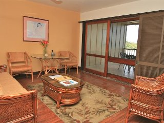 #103 - Helani (Ocean View 1-Bedroom apartment)