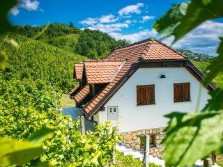 Wine Hill, Croatia