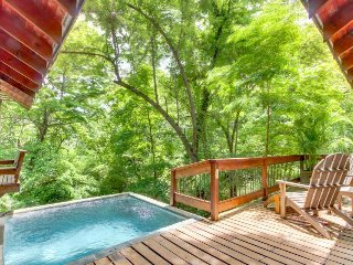 Gorgeous treehouse-style cabin w/ private plunge pool & seasonal ocean views!