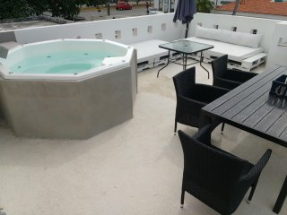Fully Private 4BR House, Jaccuzi on terrace, kitchen, near 5th and Beach