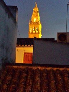 Vista la Torre de la Catedral de noche desde la misma terraza.