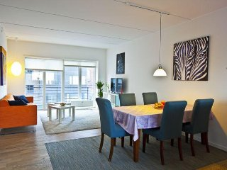 Lovely and bright Copenhagen apartment near Forum