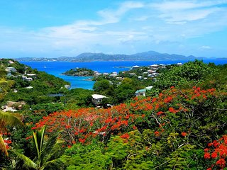 FALL SALE! Gorgeous Gecko Great views! LOW RATES! Minutes to Cruz Bay and a pool