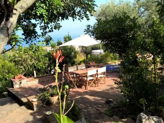 House with 3 rooms in capri, with wonderful sea view and furnished terrace