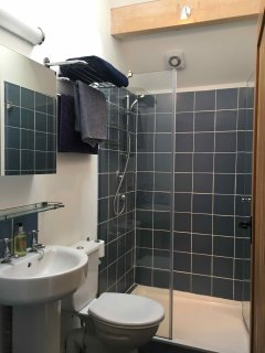 Shower room with large walk-in shower, sink and toilet