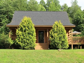 Carpenter Cabin - 6 miles to TIEC, Across the Street from Cleghorn Golf Course