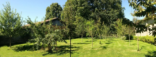 The orchard with access to garden, wood and our donkey Hasufel