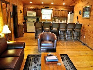Mountain Lure - Secluded Real Log Cabin with Hot Tub, View, and Wi-Fi - A Mile a