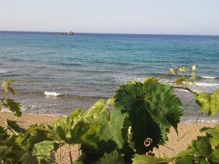 Eftyhia's Beach House 1 bedroom Apartment right on Kontogialos (Pelekas) beach