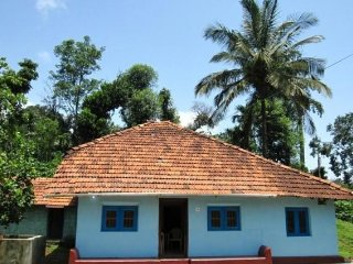 Three-bedroom homestay with a pool, ideal for pet lovers