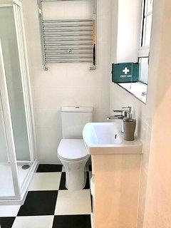 Modern bathroom with powerful shower.