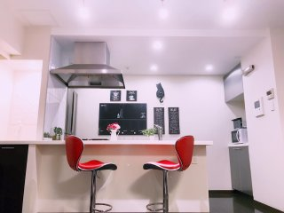 Cozy modern condo,2 min from JR&Metro, near Ginza&TokyoStation,11 min to Disney