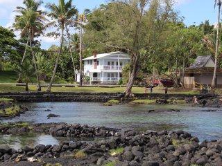 Newest House in Hilo's Best Loc. Oceanfront, kayaks, snorkel, turtles. Sleeps 15