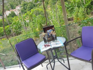 Holiday apartment Ivona1
