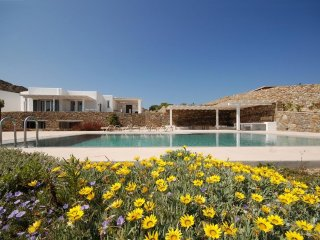 Villa Agallis holiday vacation large villa rental greece, mykonos, elia beach, p