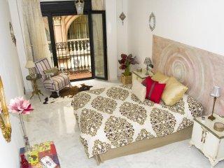 Fantastic and moderm apartment Seville Center.