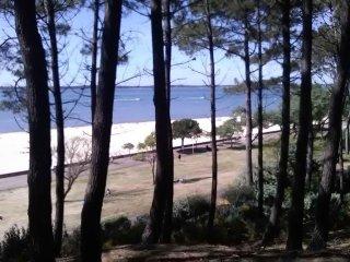 Location Arcachon Pereire en bord de plage pour 6 pers.
