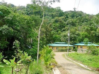 Toucan Dream - A Villa Bordering the Jungle! Located in the REAL Costa Rica!