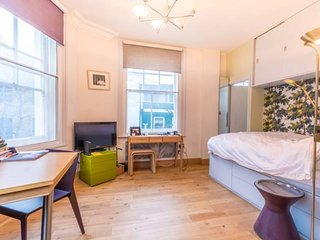 Gorgeous Apartment in the heart of London