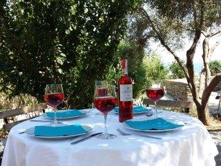Villa Armonia Vue splendide sur la mer Egee