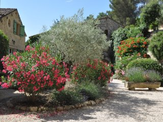 Lovely three bedroom -three bath house btwn St Remy and Avignon