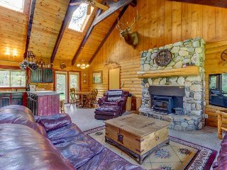 Beautiful cabin with private hot tub awaits dog-friendly family