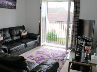 Solihull - Rose Gold Apartment with Juliet Balcony Near Airport & NEC