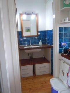 Vanity unit adjacent to shower room