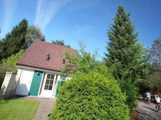 House in Hellendoorn with Internet, Pool, Garden (72225)