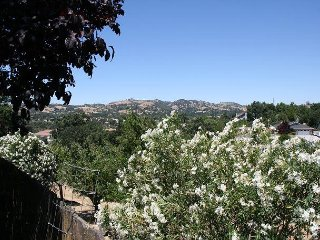 Incredible Views and Easy Access to Downtown and Paso Robles Wine Country